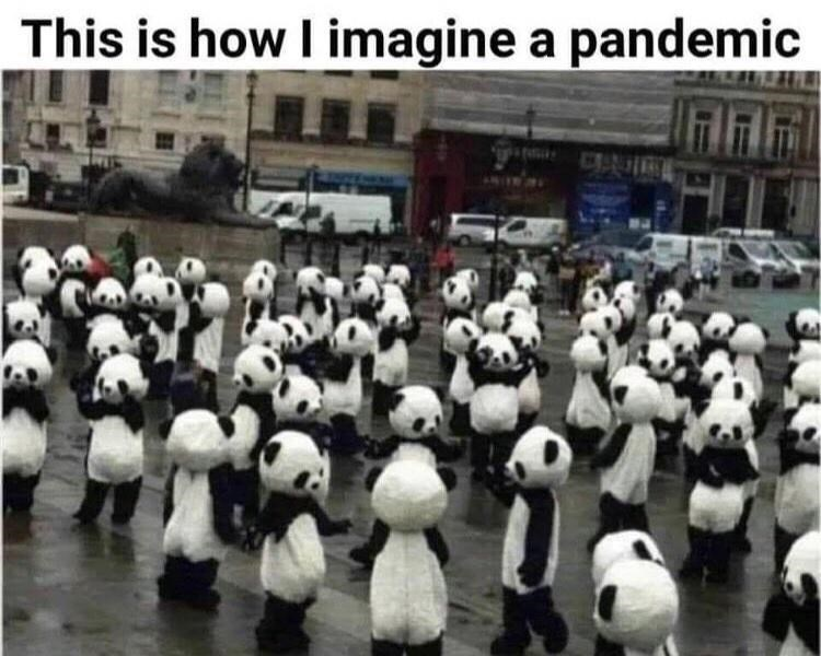 Crowd - This is how I imagine a pandemic CENI