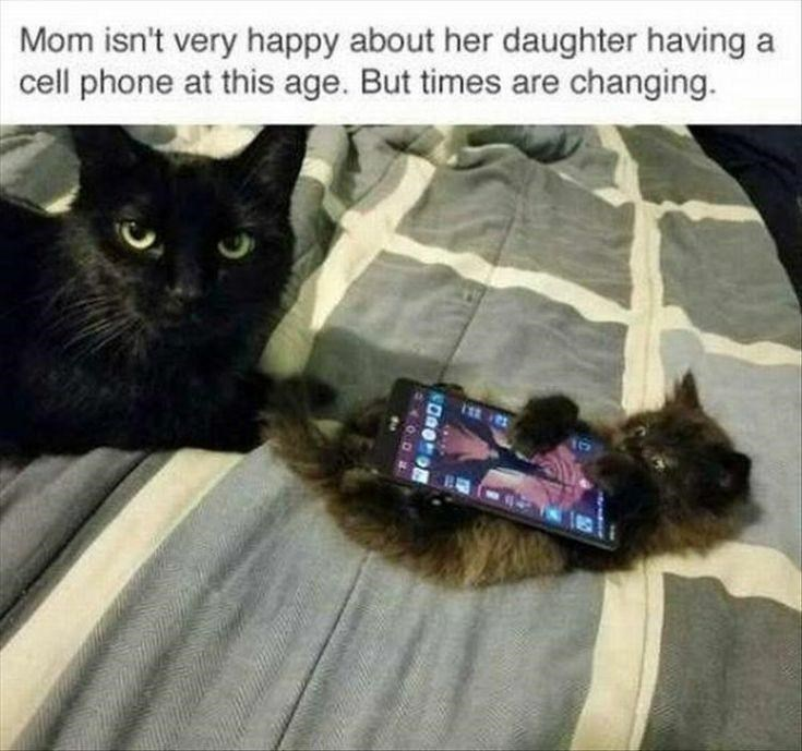 Cat - Mom isn't very happy about her daughter having a cell phone at this age. But times are changing. 105