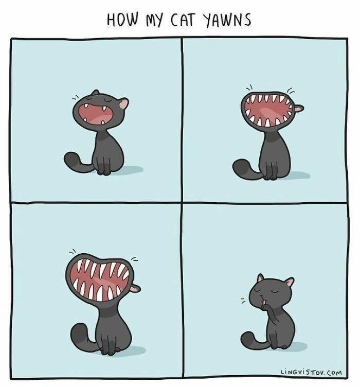 Cartoon - HOW MY CAT YAWNS %24 LINGVISTOV. COM