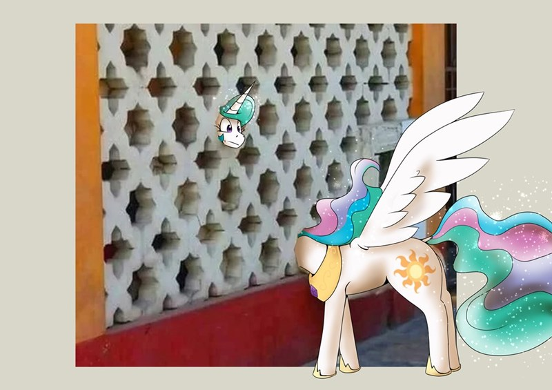 Memes gryphon bbq ponify princess celestia - 9561804800
