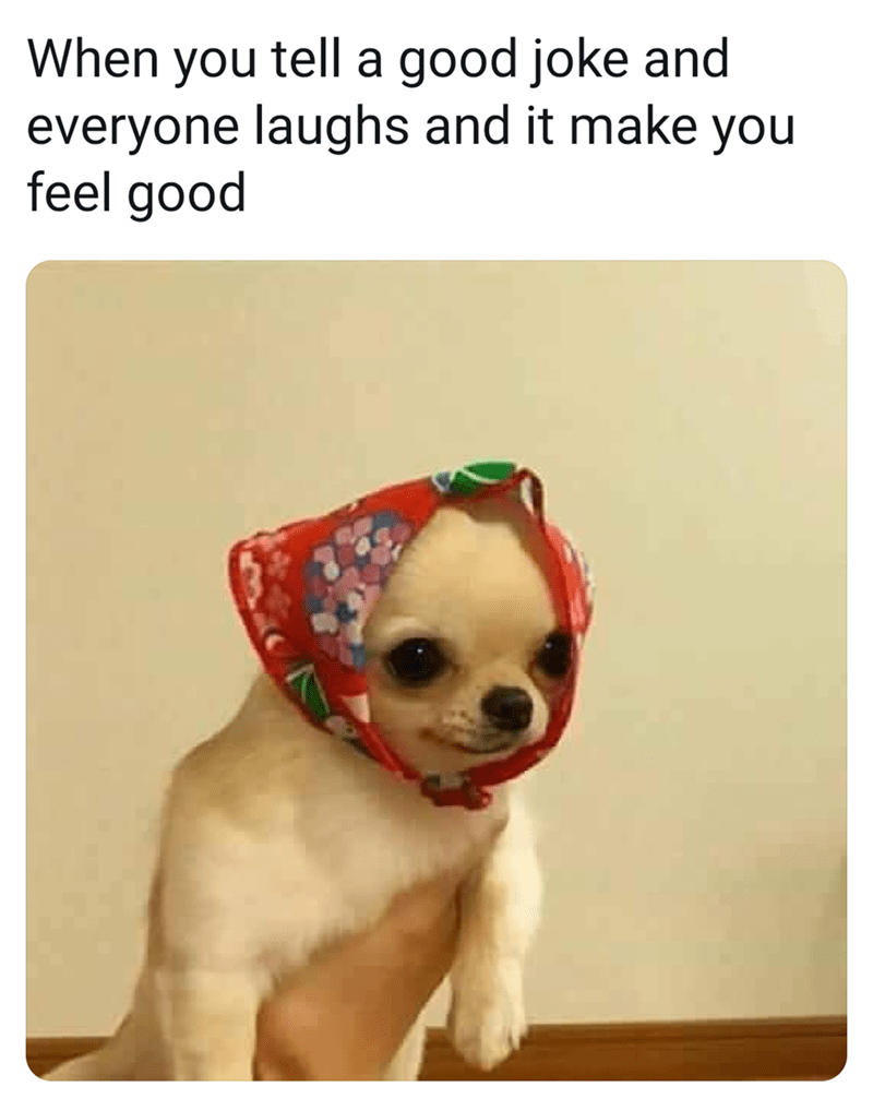 Dog - When you tell a good joke and everyone laughs and it make you feel good