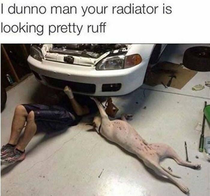 Vehicle door - I dunno man your radiator is looking pretty ruff