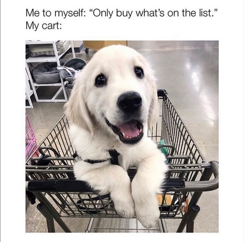 """Dog - Me to myself: """"Only buy what's on the list."""" Му cart:"""