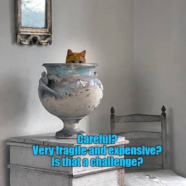 Table - Careful? Very fragileandexpensive? Is thatachallenge?