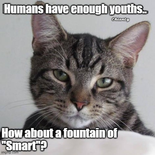 """Cat - Humans have enough youths. Ciianty How about a fountain of """"Smart? imgfilip.com"""