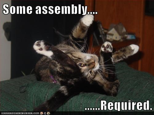 Cat - Some assembly... ..Required. ICANHASOHEEZBURGER.COM