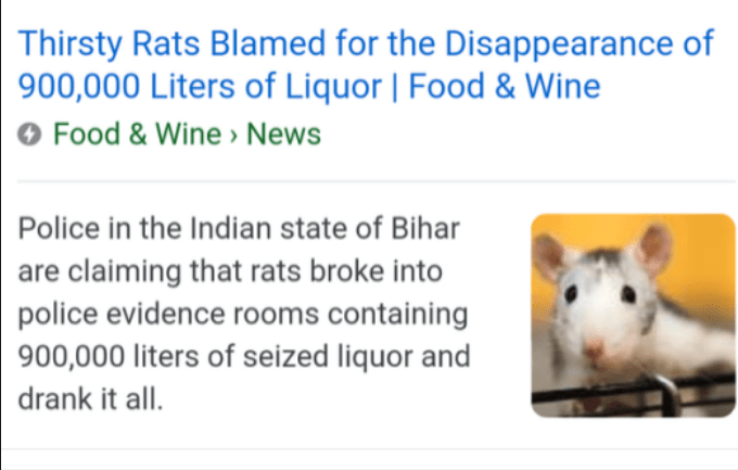 Text - Thirsty Rats Blamed for the Disappearance of 900,000 Liters of Liquor   Food & Wine O Food & Wine » News Police in the Indian state of Bihar are claiming that rats broke into police evidence rooms containing 900,000 liters of seized liquor and drank it all.