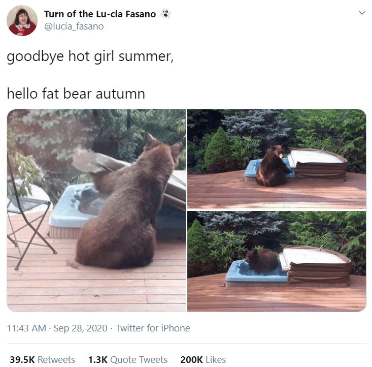 Adaptation - Turn of the Lu-cia Fasano @lucia_fasano goodbye hot girl summer, hello fat bear autumn 11:43 AM · Sep 28, 2020 · Twitter for iPhone 39.5K Retweets 1.3K Quote Tweets 200K Likes