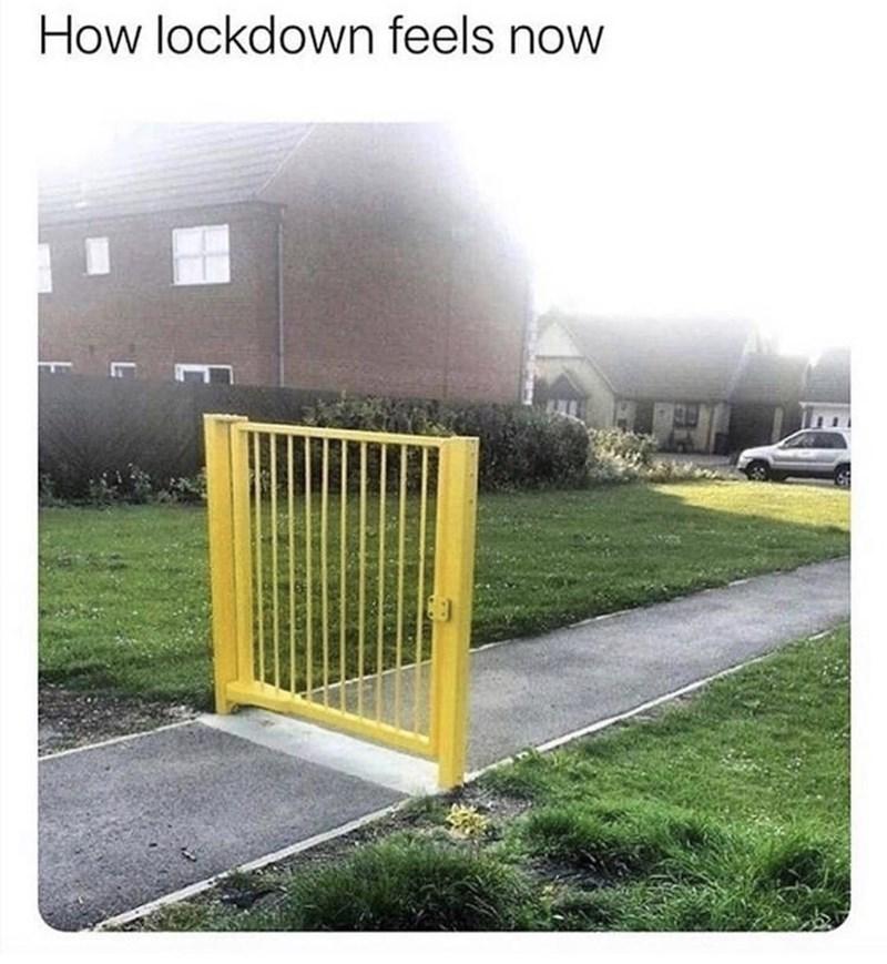 Grass - How lockdown feels now