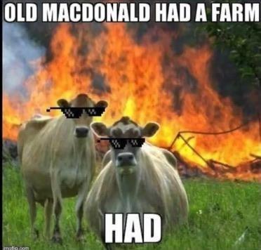 Wildlife - OLD MACDONALD HAD A FARM HAD mafio.com