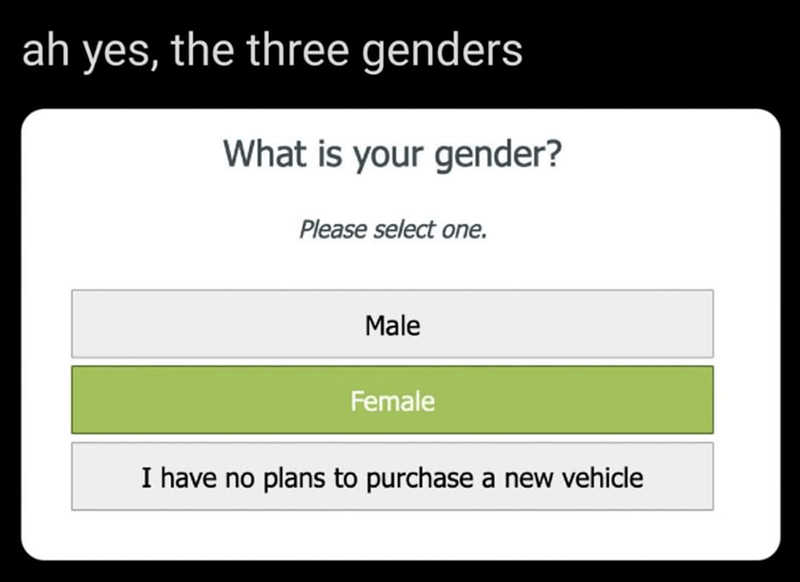 Text - ah yes, the three genders What is your gender? Please select one. Male Female I have no plans to purchase a new vehicle