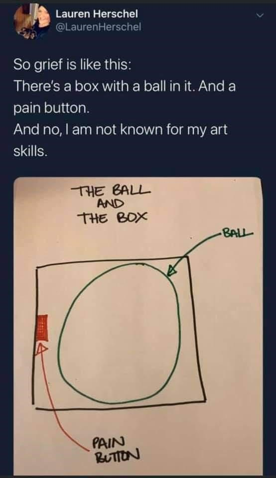 Text - Lauren Herschel @LaurenHerschel So grief is like this: There's a box with a ball in it. And a pain button. And no, I am not known for my art skills. THE BALL AND THE BOX BALL PAIN BUTTON