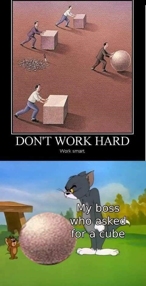 funny work meme businessman pushing ball instead of cubes DON'T WORK HARD My boss who asked for a cube Tom and Jerry