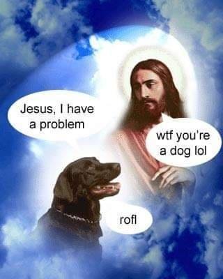Photography - Jesus, I have a problem wtf you're a dog lol rofl