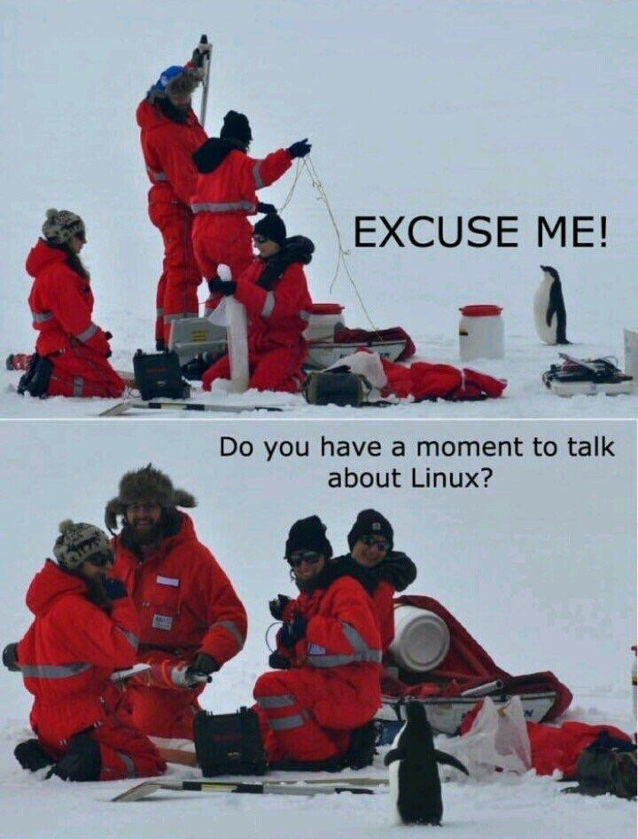 Snow - EXCUSE ME! Do you have a moment to talk about Linux? 17h