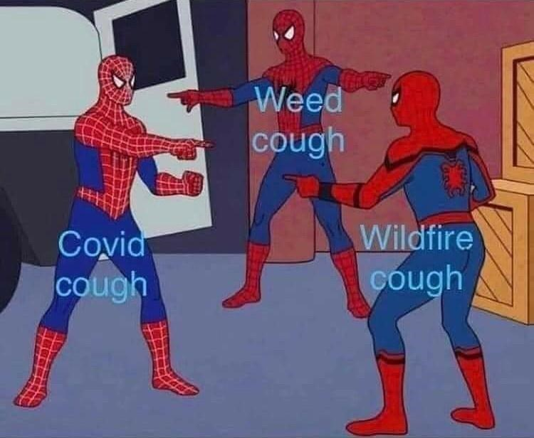 Spider-man - Weed cough Covid cough Wildfire cough