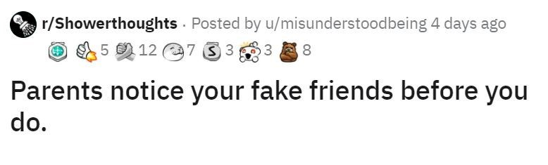 Text - r/Showerthoughts Posted by u/misunderstoodbeing 4 days ago 5の12 @733 3 8 Parents notice your fake friends before you do.