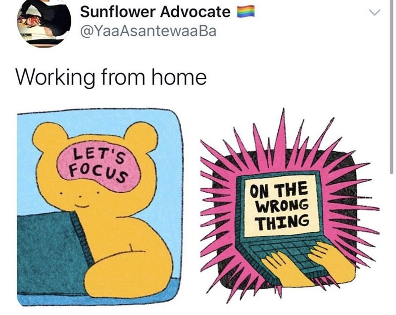 Text - Sunflower Advocate @YaaAsantewaaBa Working from home LET'S FOCUS ON THE WRONG TΤHING <>