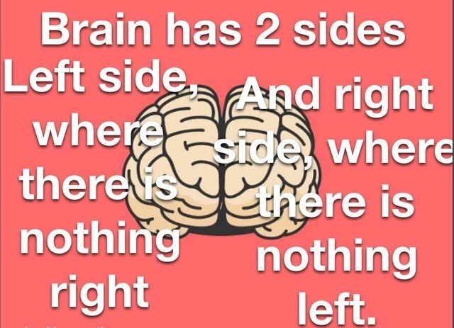 Text - Brain has 2 sides Left side, And right where side where thereshere is nothing right nothing left.