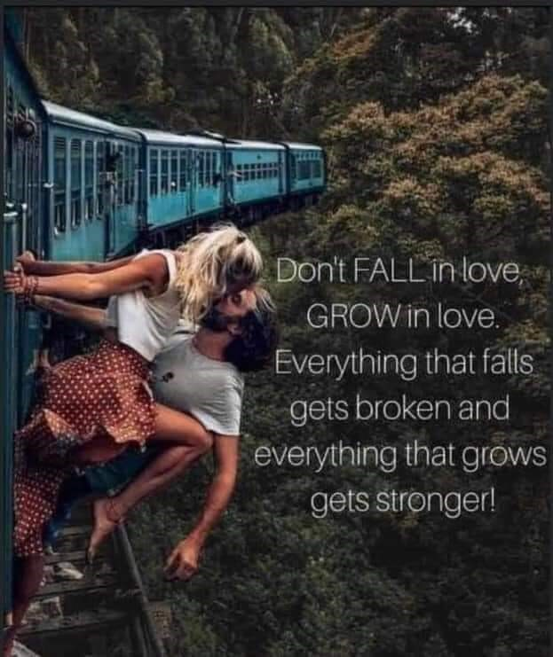 Transport - Don't FALL in love, GROW in love. Everything that falls gets broken and everything that grows gets stronger!