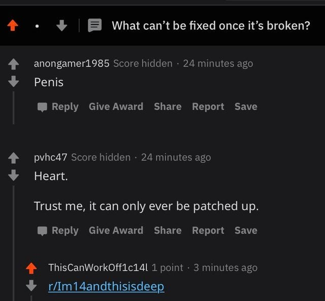 Text - What can't be fixed once it's broken? anongamer1985 Score hidden · 24 minutes ago Penis , Reply Give Award Share Report Save pvhc47 Score hidden · 24 minutes ago Heart. Trust me, it can only ever be patched up. O Reply Give Award Share Report Save ThisCanWorkOff1c14l 1 point 3 minutes ago r/Im14andthisisdeep