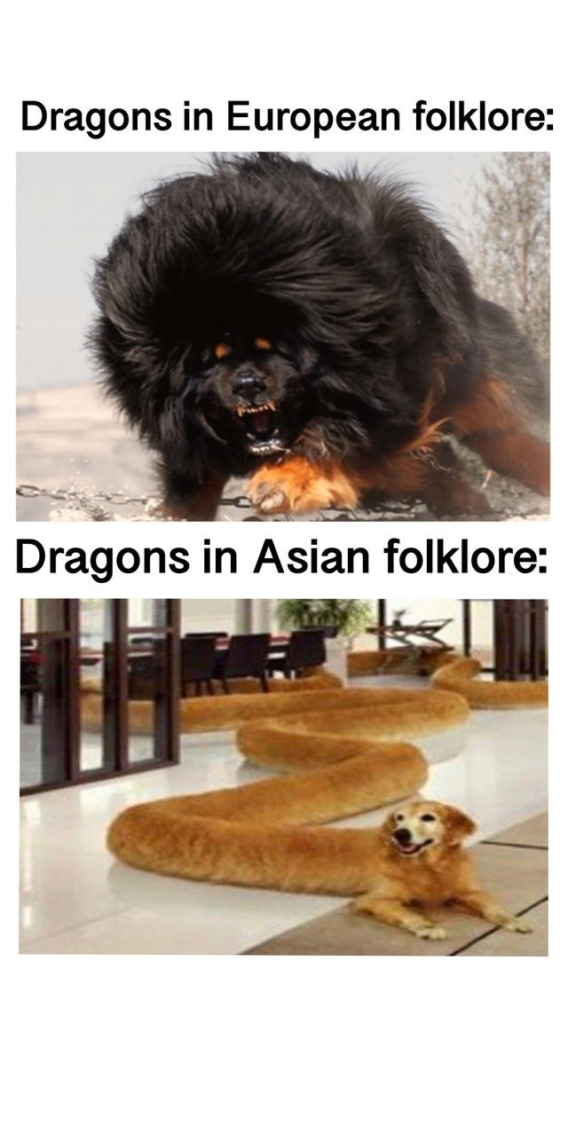 Dog - Dragons in European folklore: Dragons in Asian folklore: