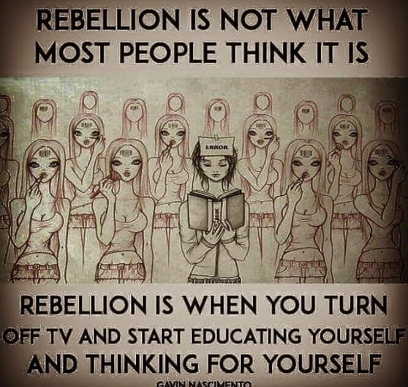 Text - REBELLION IS NOT WHAT MOST PEOPLE THINK IT IS ERROR REBELLION IS WHEN YOU TURN OFF TV AND START EDUCATING YOURSELF AND THINKING FOR YOURSELF GAVIN NASCIMENTO