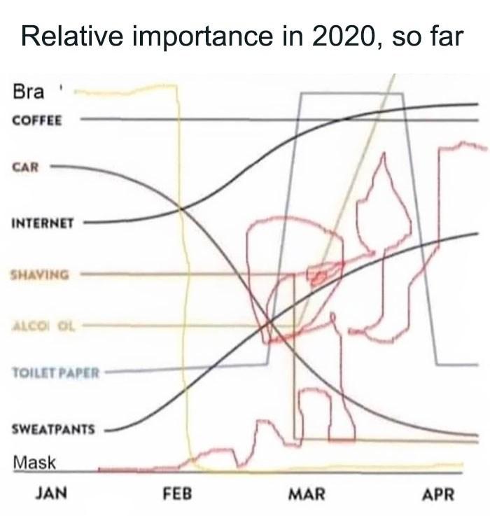 Text - Relative importance in 2020, so far Bra COFFEE CAR INTERNET SHAVING ALCOI OL TOILET PAPER SWEATPANTS Mask JAN FEB MAR APR