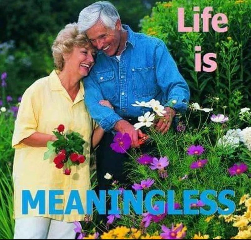 Flower - Life IS MEANINGLESS