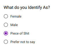 Text - What do you Identify As? O Female Male Piece of Shit O Prefer not to say O O