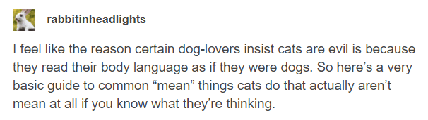 """Text - rabbitinheadlights I feel like the reason certain dog-lovers insist cats are evil is because they read their body language as if they were dogs. So here's a very basic guide to common """"mean"""" things cats do that actually aren't mean at all if you know what they're thinking."""