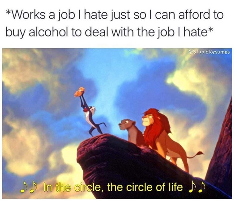Text - *Works a job I hate just so I can afford to buy alcohol to deal with the job I hate* @StupidResumes In the circle, the circle of life )