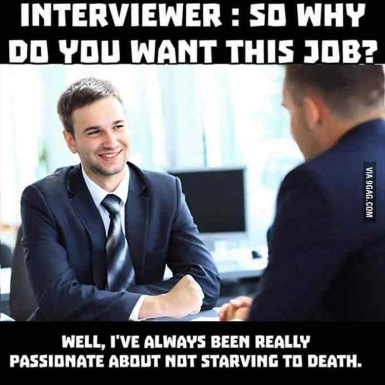 Photo caption - INTERVIEWER : SO WHY DD YOU WANT THIS JOB? WELL, I'VE ALWAYS BEEN REALLY PASSIONATE ABOUT NOT STARVING TO DEATH. VIA 9GAG.COM