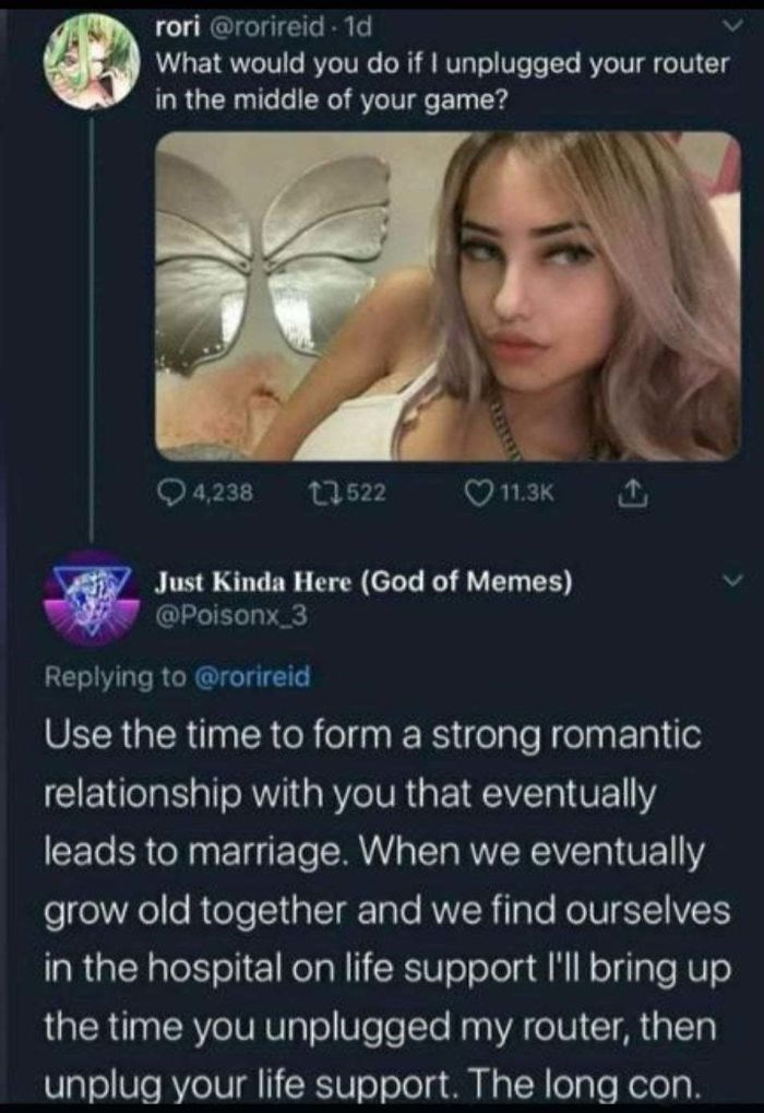 Text - rori @rorireid - 1d What would you do if I unplugged your router in the middle of your game? Q4,238 t7 522 O11.3K Just Kinda Here (God of Memes) @Poisonx_3 Replying to @rorireid Use the time to form a strong romantic relationship with you that eventually leads to marriage. When we eventually grow old together and we find ourselves in the hospital on life support l'll bring up the time you unplugged my router, then unplug your life support. The long con.