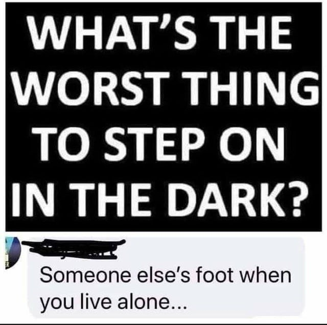 Text - WHAT'S THE WORST THING TO STEP ON IN THE DARK? Someone else's foot when you live alone...