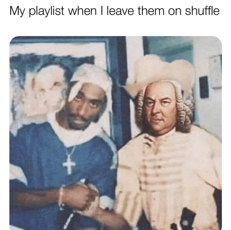 Funny Memes, Dank Memes, Relatable Memes | My playlist when I leave them on shuffle Tupac and Bach shaking hands