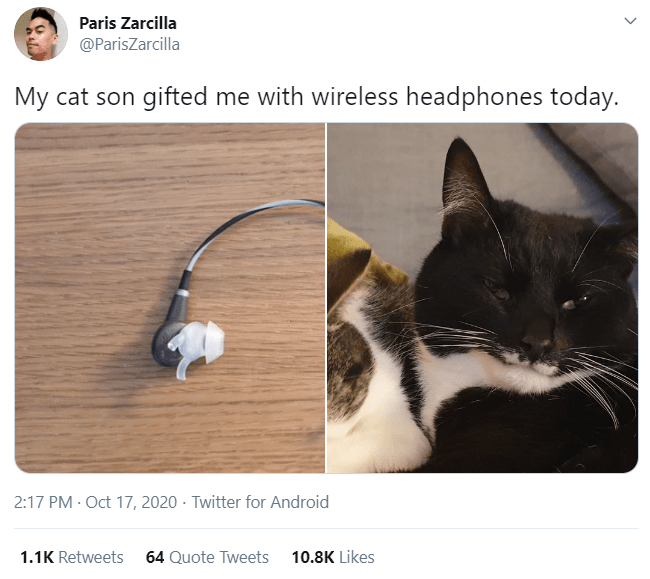 Cat - Paris Zarcilla @ParisZarcilla My cat son gifted me with wireless headphones today. 2:17 PM · Oct 17, 2020 - Twitter for Android 1.1K Retweets 64 Quote Tweets 10.8K Likes