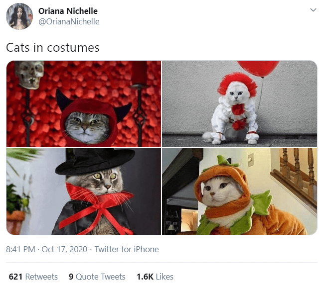 Design - Oriana Nichelle @OrianaNichelle Cats in costumes 8:41 PM · Oct 17, 2020 · Twitter for iPhone 621 Retweets 9 Quote Tweets 1.6K Likes >