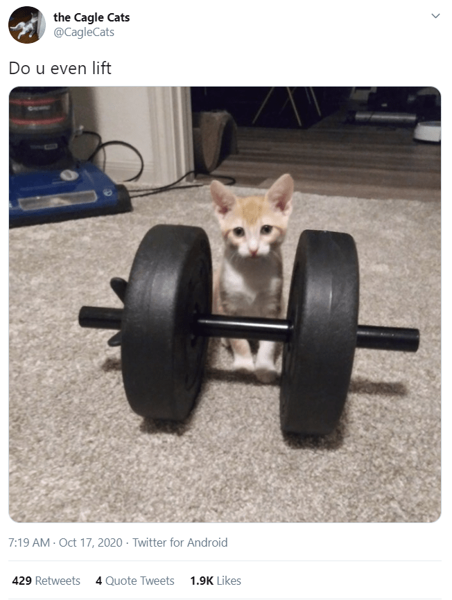Weights - the Cagle Cats @CagleCats Do u even lift 7:19 AM - Oct 17, 2020 · Twitter for Android 429 Retweets 4 Quote Tweets 1.9K Likes >