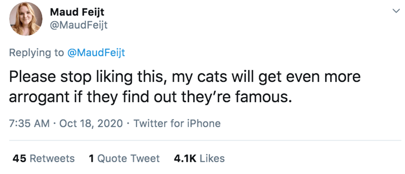 Text - Maud Feijt @MaudFeijt Replying to @MaudFeijt Please stop liking this, my cats will get even more arrogant if they find out they're famous. 7:35 AM · Oct 18, 2020 · Twitter for iPhone 45 Retweets 1 Quote Tweet 4.1K Likes