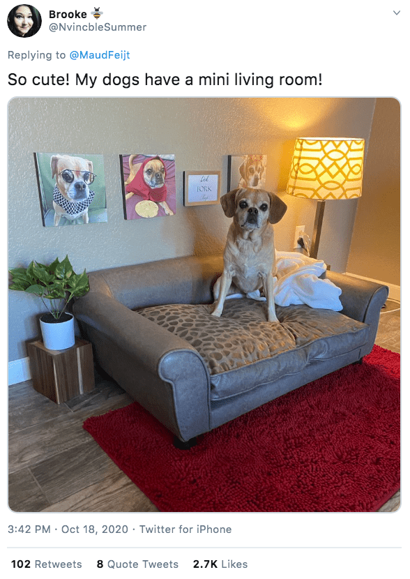 Furniture - Brooke @NvincbleSummer Replying to @MaudFeijt So cute! My dogs have a mini living room! BORK 3:42 PM · Oct 18, 2020 · Twitter for iPhone 102 Retweets 8 Quote Tweets 2.7K Likes