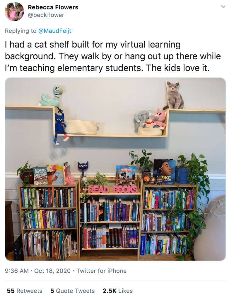 Shelf - Rebecca Flowers @beckflower Replying to @MaudFeijt I had a cat shelf built for my virtual learning background. They walk by or hang out up there while I'm teaching elementary students. The kids love it. HISTOR SMASHER OKE 9:36 AM · Oct 18, 2020 · Twitter for iPhone 55 Retweets 5 Quote Tweets 2.5K Likes