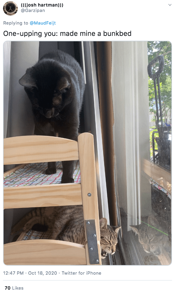 Cat - (((josh hartman))) @Garzipan Replying to @MaudFeijt One-upping you: made mine a bunkbed 12:47 PM · Oct 18, 2020 · Twitter for iPhone 70 Likes