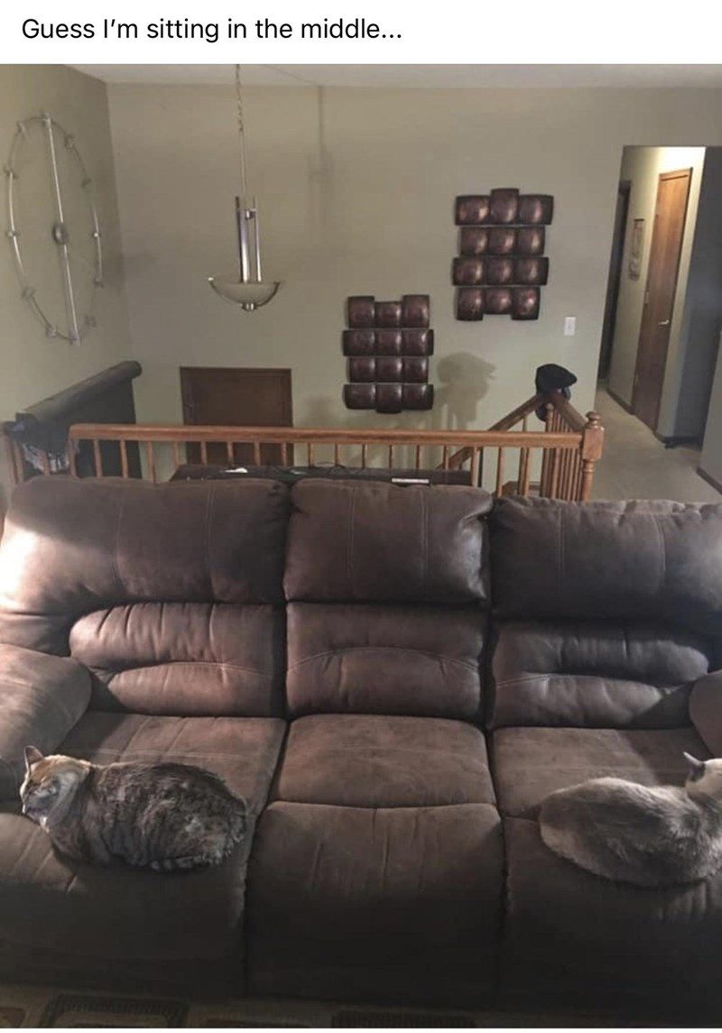 Couch - Guess I'm sitting in the middle...