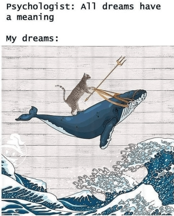 Marine mammal - Psychologist: All dreams have a meaning My dreams: