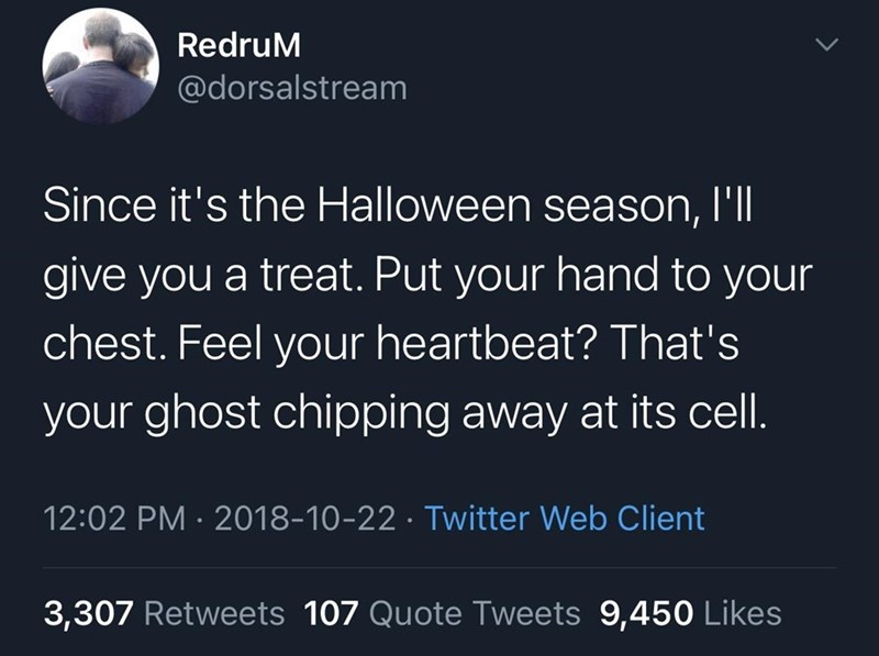 Text - RedruM @dorsalstream Since it's the Halloween season, l'll give you a treat. Put your hand to your chest. Feel your heartbeat? That's your ghost chipping away at its cell. 12:02 PM · 2018-10-22 · Twitter Web Client 3,307 Retweets 107 Quote Tweets 9,450 Likes