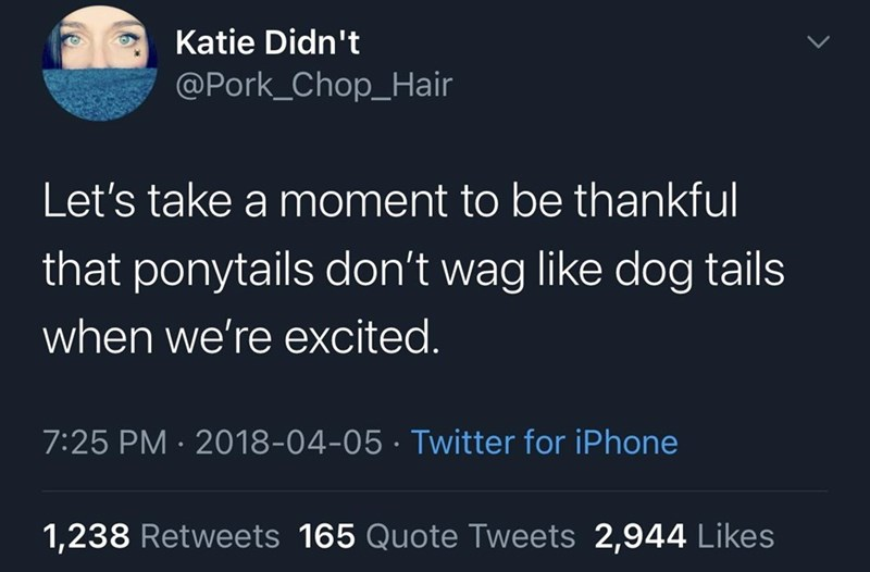 Text - Katie Didn't @Pork_Chop_Hair Let's take a moment to be thankful that ponytails don't wag like dog tails when we're excited. 7:25 PM · 2018-04-05 · Twitter for iPhone 1,238 Retweets 165 Quote Tweets 2,944 Likes