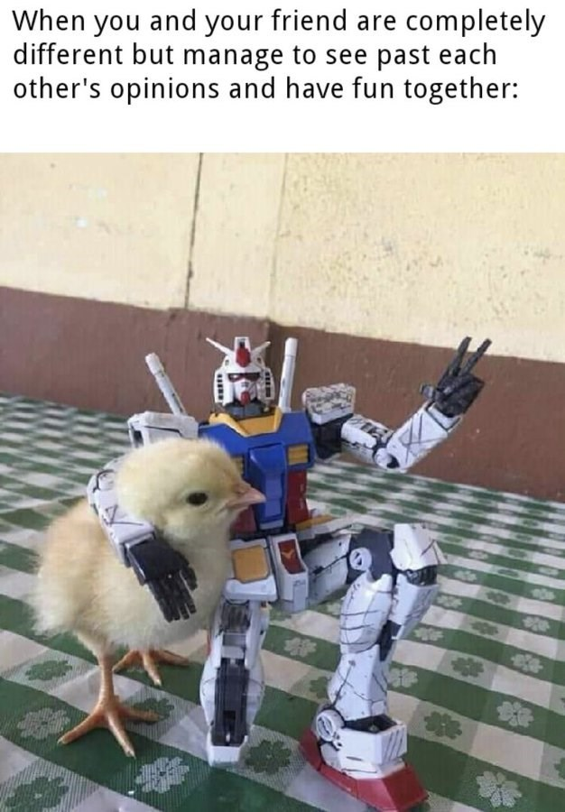 When you and your friend are completely different but manage to see past each other's opinions and have fun together: little chick baby chicken with a transformer action figure