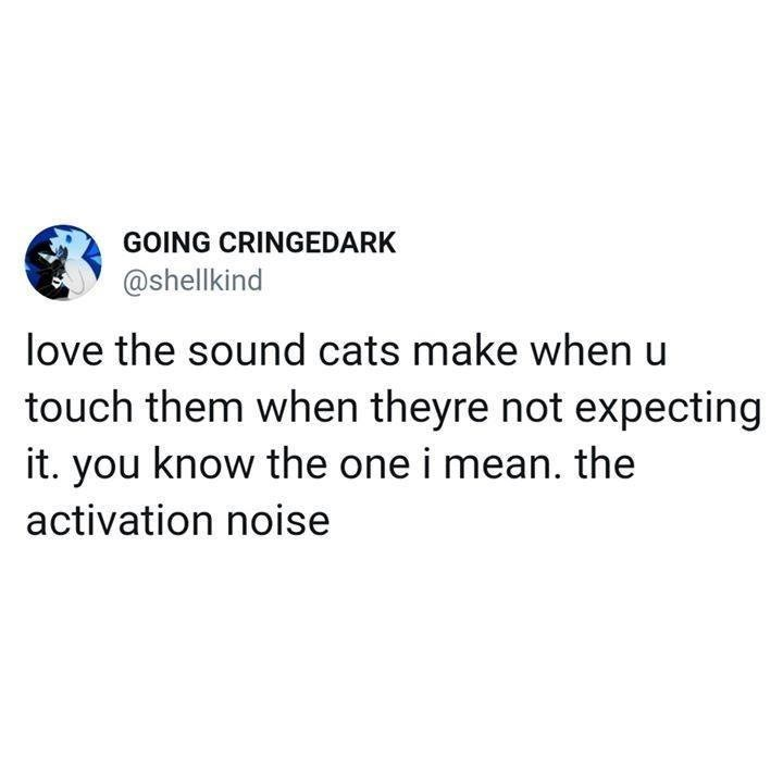GOING CRINGEDARK @shellkind love the sound cats make when u touch them when theyre not expecting it. you know the one i mean. the activation noise