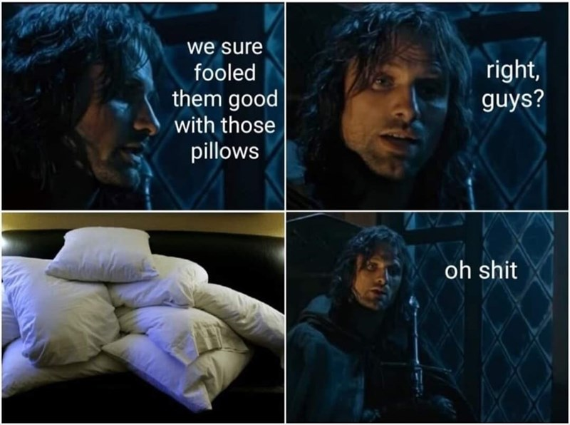 Text - we sure fooled them good right, guys? with those pillows oh shit